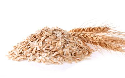 Avena: il cereale che fa bene alla salute